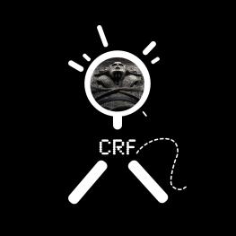 crf-mic2-mummy